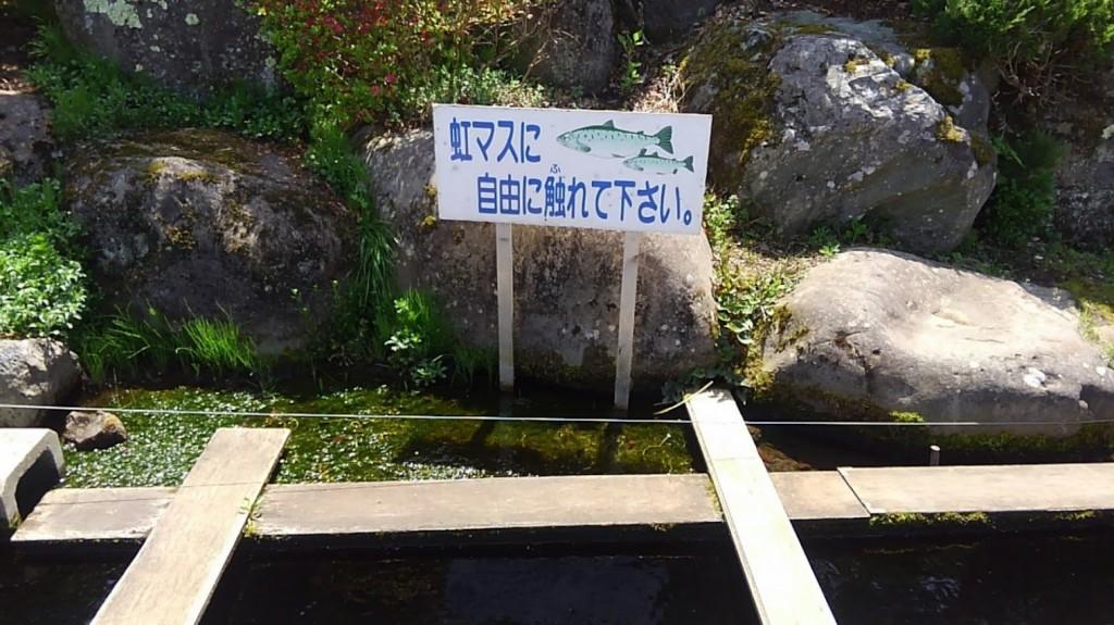 忍野八海 はんの木林資料館 虹マス ふれあい