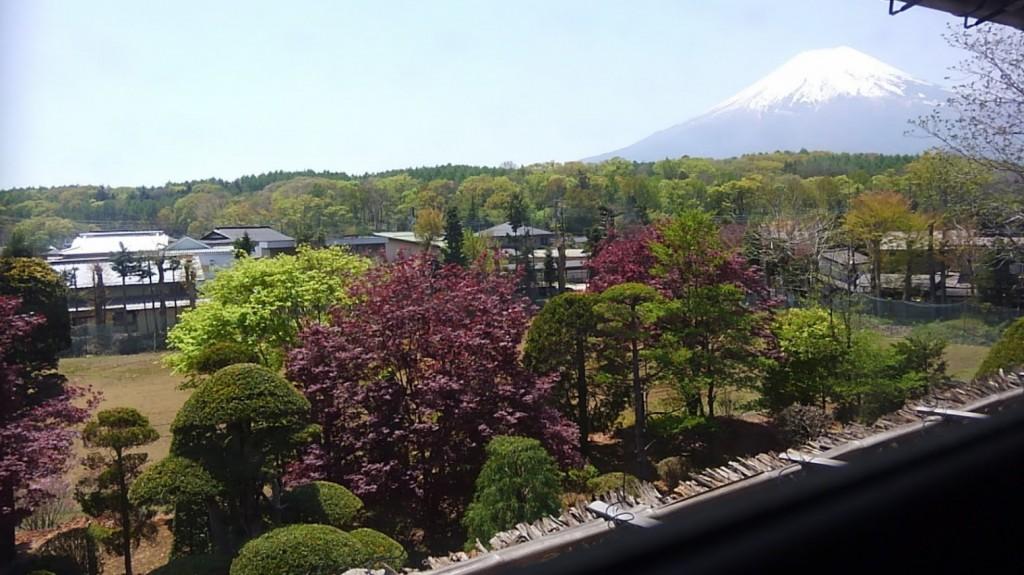 渡邉泉氏住宅 屋根裏からの景色